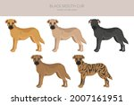 black mouth cur clipart.... | Shutterstock .eps vector #2007161951