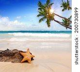 starfish with ocean   beach... | Shutterstock . vector #200730899