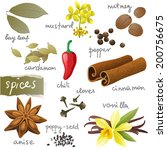 anise,cardamom,cayenne,chili,cinnamon,clove,collection,condiment,cooking,cuisine,design,dry,eating,food,fruits