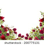 Stock photo red roses 200775131