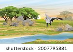 the secretary bird sagittarius... | Shutterstock .eps vector #2007795881