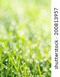 green grass with green bokeh... | Shutterstock . vector #200813957
