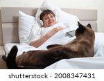 A Domestic Cat Entertains A...