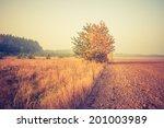 vintage photo of autumn field | Shutterstock . vector #201003989