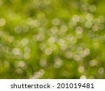 green bokeh lights in sunny day   Shutterstock . vector #201019481
