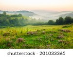 cold fog on forest near mountains - stock photo