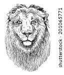 artwork lion  sketch black and... | Shutterstock . vector #201065771