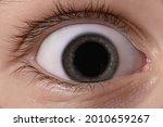 baby's eye close up. big pupil...   Shutterstock . vector #2010659267