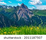 landscape with grass and... | Shutterstock . vector #2011187507