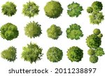 vector tree top view isolated... | Shutterstock .eps vector #2011238897