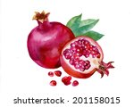 pomegranates with green leaves... | Shutterstock .eps vector #201158015