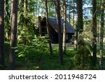 Countryside old rural house in the middle of the forest, like russian children