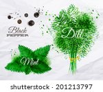 spices herbs set drawn... | Shutterstock .eps vector #201213797