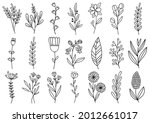 collection forest fern... | Shutterstock .eps vector #2012661017