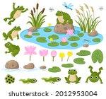 Cartoon Frogs. Cute Amphibian...