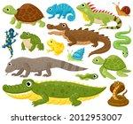 cartoon amphibians and reptiles.... | Shutterstock .eps vector #2012953007