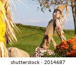 Decorative scarecrow on a farm yard - stock photo