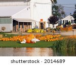 Pumpkins and halloween decorations on a farm - stock photo