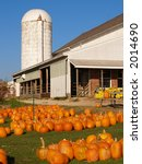 Pumpkins for sale in front of barn and silo - stock photo