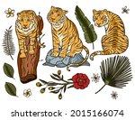 tiger cartoon tropical vector...   Shutterstock .eps vector #2015166074