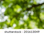 bokeh from tree | Shutterstock . vector #201613049
