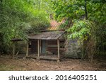 An Old Homestead Abandoned In...