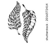 the fern leaves are redrawn as... | Shutterstock .eps vector #2016572414