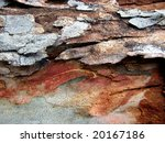 gum tree bark textures 1