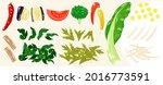 food illustrations  vegetables  ...   Shutterstock .eps vector #2016773591