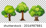 set of different trees on... | Shutterstock .eps vector #2016987881