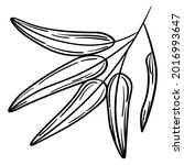 hand drawn simple olive branch... | Shutterstock .eps vector #2016993647