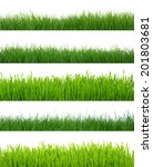 green grass isolated on white... | Shutterstock . vector #201803681