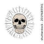 anatomic skull vector art.... | Shutterstock .eps vector #2019685541