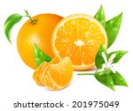 fresh ripe oranges with leaves... | Shutterstock .eps vector #201975049