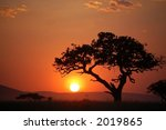 African Sunset  Serengeti ...