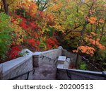 minnehaha park at fall in...   Shutterstock . vector #20200513