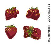 a set of vector drawings of... | Shutterstock .eps vector #2020461581