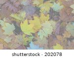 This is a ghosted background of some fall leaves. - stock photo
