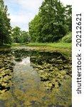 landscape with green overgrown... | Shutterstock . vector #20212621