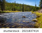 Rocky River In Yellowstone...