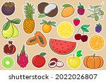 collection of fruits and... | Shutterstock .eps vector #2022026807