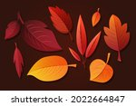 autumn leaves collection....   Shutterstock .eps vector #2022664847