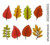 autumn leaves collection....   Shutterstock .eps vector #2022665021