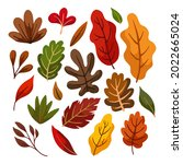 autumn leaves collection....   Shutterstock .eps vector #2022665024