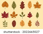 autumn leaves collection....   Shutterstock .eps vector #2022665027