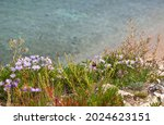 Shore Of Siberian Baikal Lake...