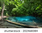 emerald pool is unseen pool in... | Shutterstock . vector #202468384