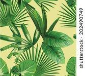 tropic print summer exotic...   Shutterstock .eps vector #202490749