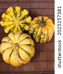 different squash in different...   Shutterstock . vector #2025257381