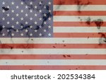 usa background | Shutterstock . vector #202534384